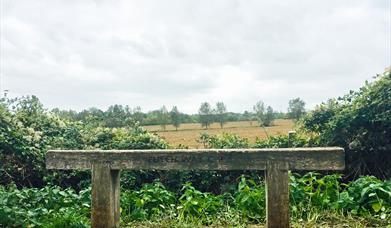 Image of wooden plank denoting the Flitch Way country park with open fields in the background