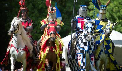 Knights of Royal England Joust