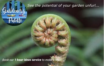 ideas service advert