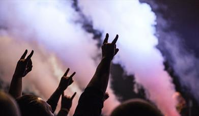 Hands in the air with pink and purple smoke
