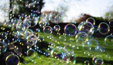 Funday Fridays in the Parkland: Bubblemania