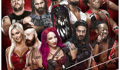 WWE Live -- Wrestlemania Revenge