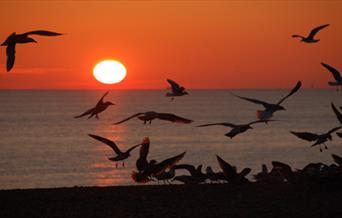 Brighton beach sunset.