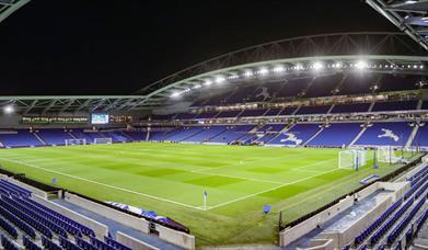 Brighton & Hove Albion v Crystal Palace match