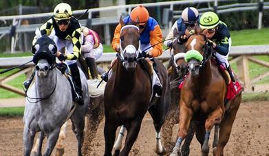 People racing horses