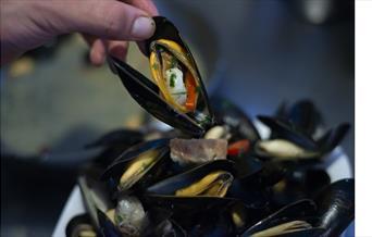 Nuposto mussels