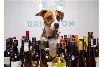 The Brighton Wine Company