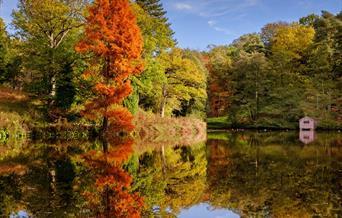 Wakehurst autumn