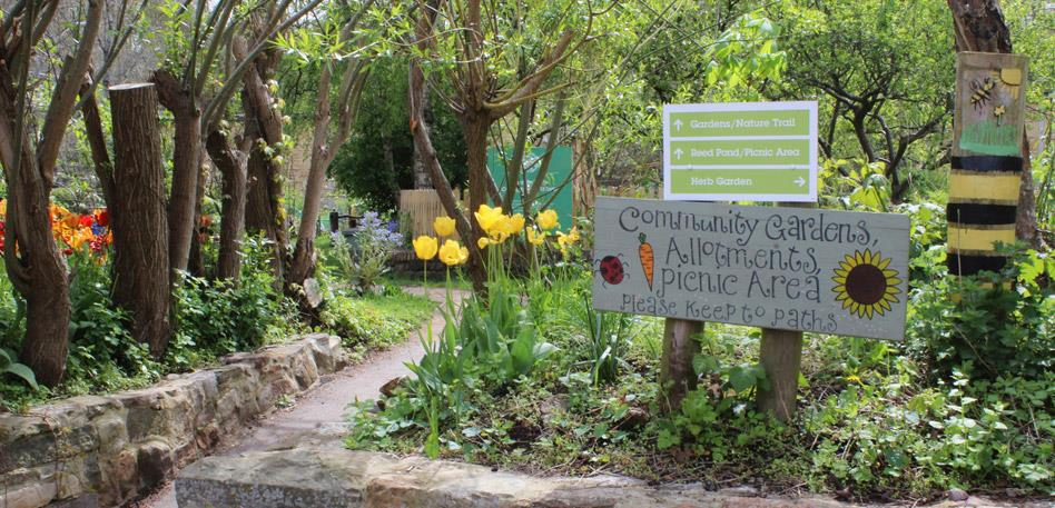 Things to do for free in Bristol: Windmill Hill City Farm