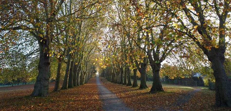 St George's Park East Bristol