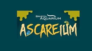 Ascareium Bristol poster