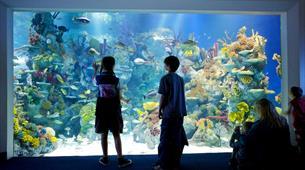Children at Bristol Aquarium