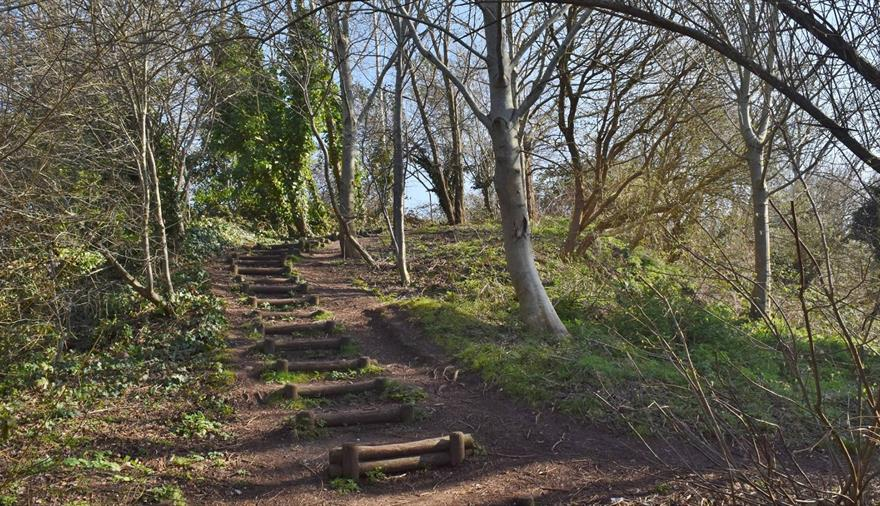 Royate Hill Nature Reserve