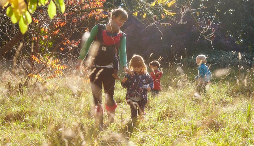 Autumn at Westonbirt Arbouretum