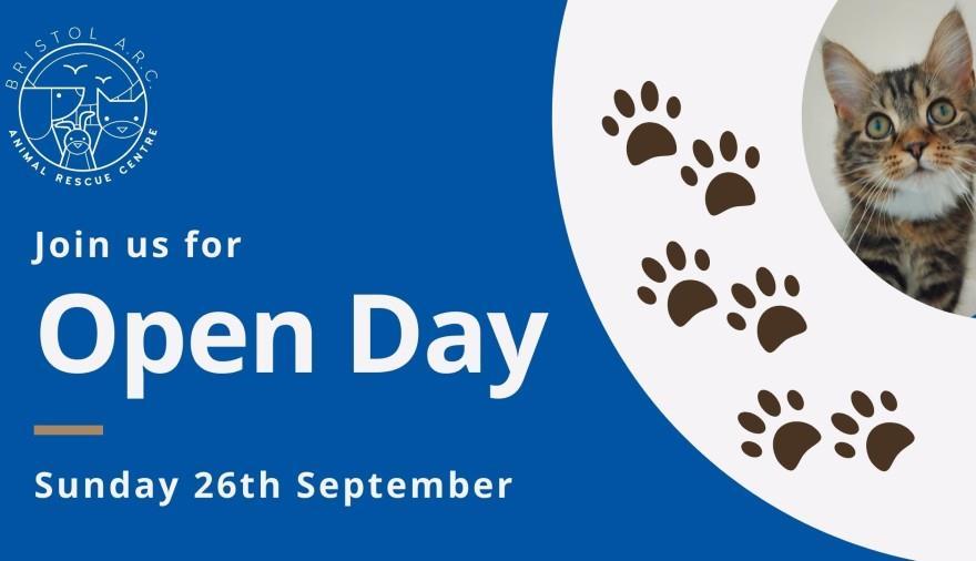 Bristol Animal Rescue Open Day at Bristol Animal Rescue Centre