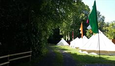 Brook Lodge Farm Camping tents
