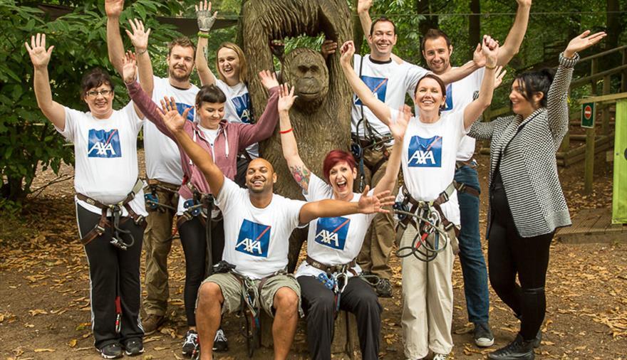 Go Ape Team Building