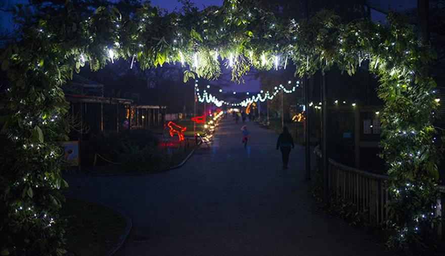 Christmas at Bristol Zoo Gardens