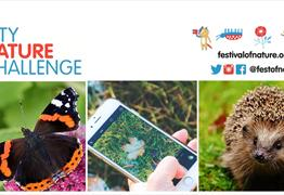 City Nature Challenge with the Festival of Nature