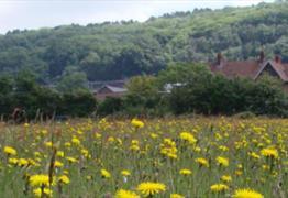 Clapton Moor
