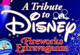 Disney Fireworks Extravaganza by Almondsbury Creative