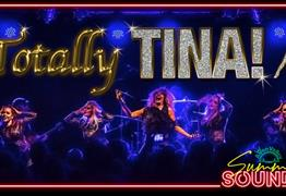 Summer Sounsd: Totally Tina - Tina Turner Tribute Act Avon Valley Adventure and Wildlife Park