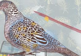 FSC's Inspired by Birds Weekend at Grow Wilder