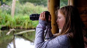 Family Wildlife Photography at WWT Slimbridge Wetland Centre