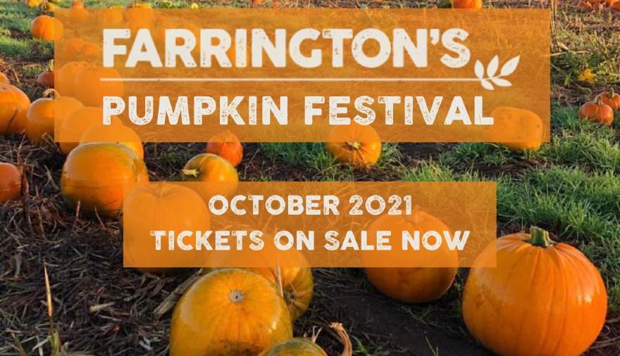 Farrington's Pumpkin Picking Festival at Farrington's Farm Shop