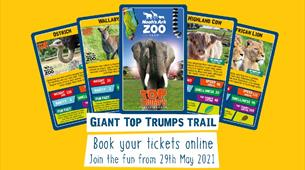Giant Top Trump Trail at Noah's Ark Zoo Farm
