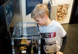 Participating in The Royal Mint Experience