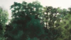 Junior Drawing School: Trees with RWA