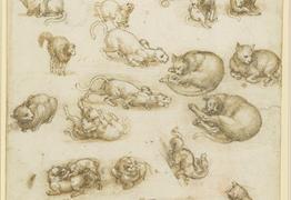 Leonardo da Vinci: A Life in Drawing at Bristol Museum & Art Gallery