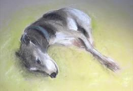 Dog Drawing - Zoom class at RWA