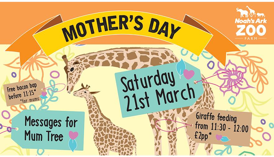 Mother's Day at Noah's Ark Zoo Farm