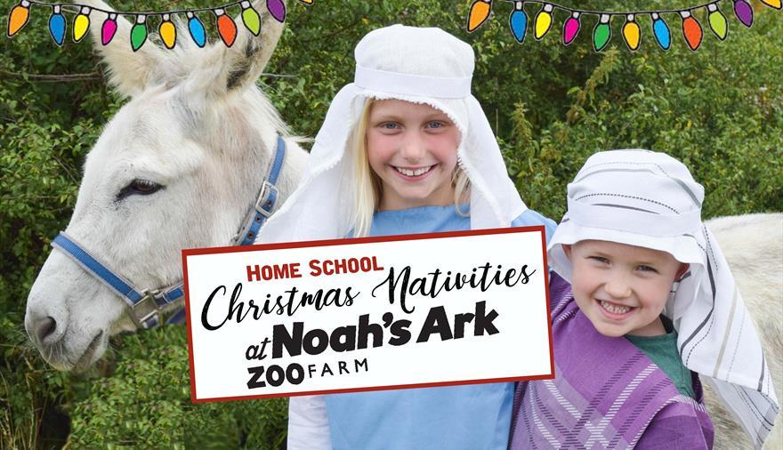 Home School Christmas Nativities at Noah's Ark Zoo Farm