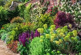 Private Walled Garden Tours at Bowood House & Gardens