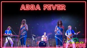 Summer Sounds: ABBA Fever - ABBA Tribute Act at Avon Valley Adventure and Wildlife Park