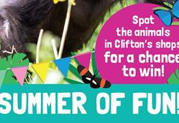 Summer of Fun: Spot the Animals in Clifton Village