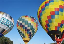 The Great Balloon Race at Bowood House & Gardens