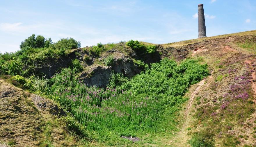 Troopers Hill Nature Reserve (c) Visit Bristol