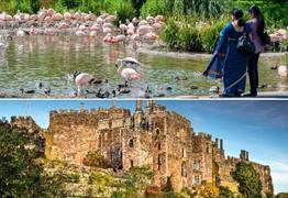 Slimbridge Wetland Centre and Berkeley Castle Group Offer