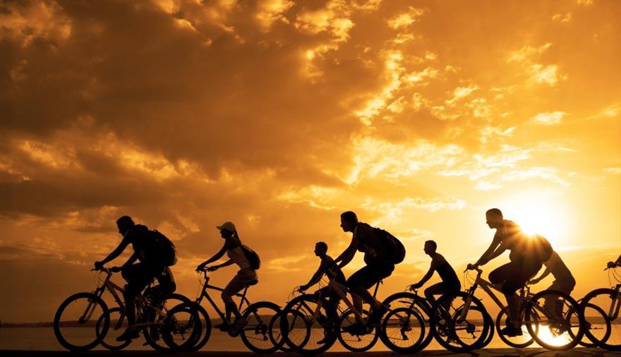 Webbs Cycle Shop