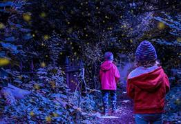 Two children walking in an illuminated forest