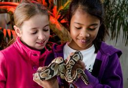 Reptile experience at Longleat