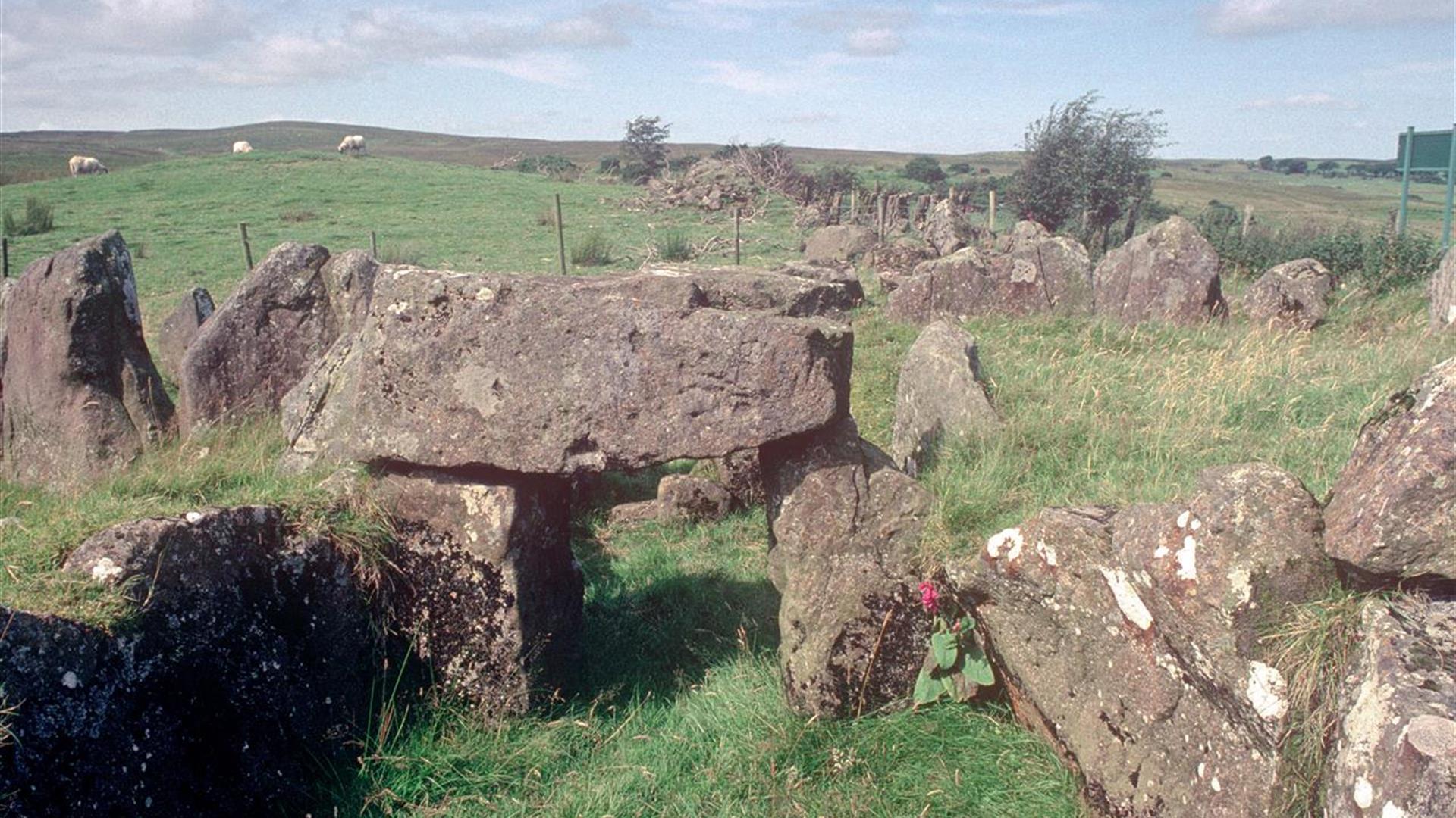 Knockoneill Court Tomb