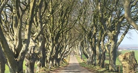 Game of Thrones® & The Causeway Coast