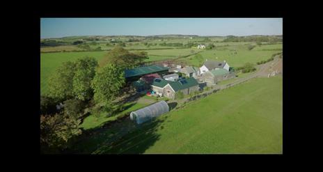 Broughgammon Eco-Farmhouse B&B