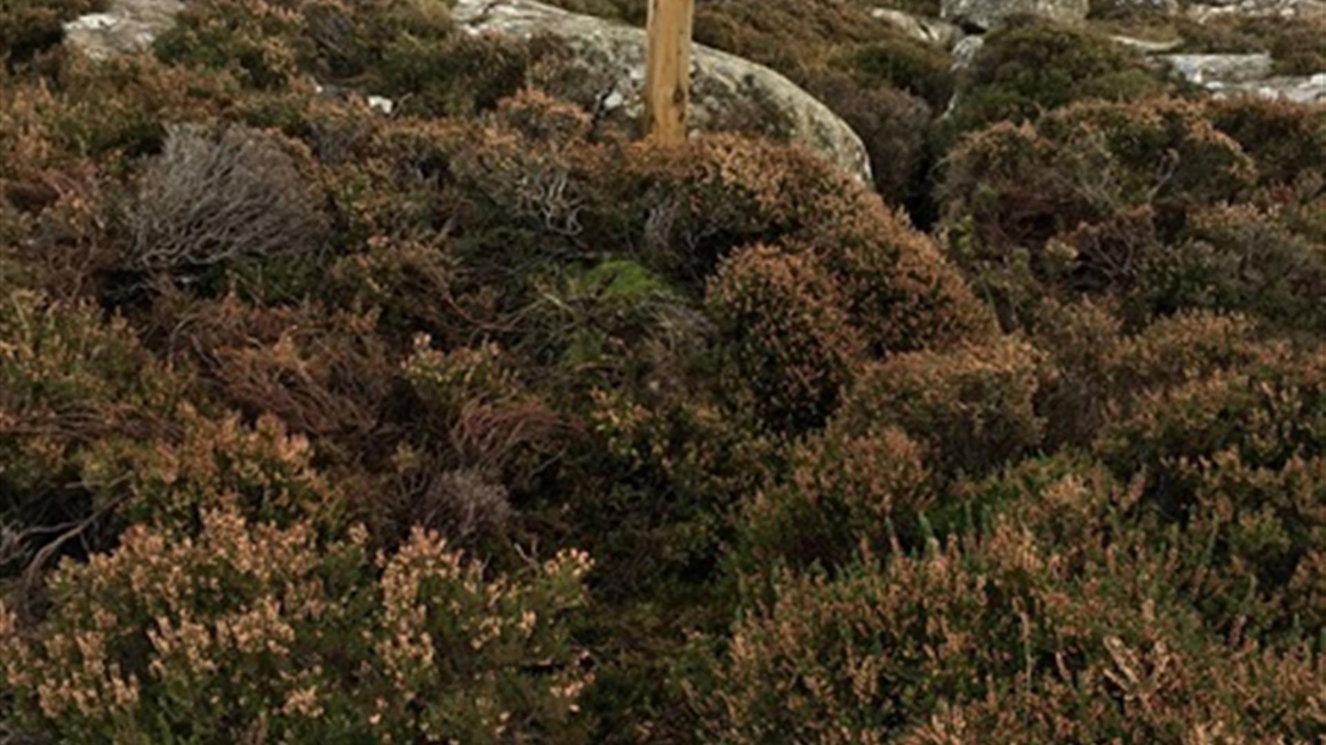 Fairhead Casán an Loch Walk