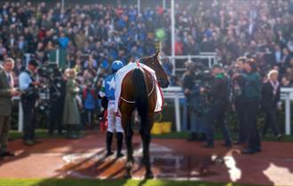 New Year's Day Racing at Cheltenham Racecourse